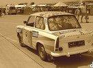 Bažant Taxík