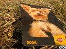 Pedigree 2006 @ Bažant Pohoda 2006