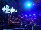 Bažant Pohoda 2010 - The Stranglers
