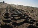 Beach @ Den Haag