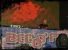 BeeFree2011