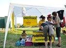 Greenpeace stánok