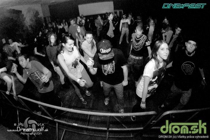 dnbfestspring14-050.jpg