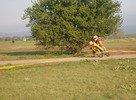 DUCLOS Alain (FRA)<br />KTM 14