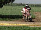 PALANTE Eric (BEL)<br />Honda 84